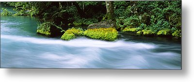 River Flowing Through A Forest, Big Metal Print