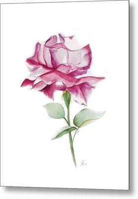 Rose 2 Metal Print by Nancy Edwards