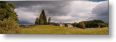 Metal Print featuring the photograph Rural Idyll by Sergey Simanovsky