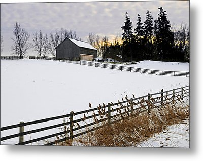 Rural Winter Landscape Metal Print by Elena Elisseeva