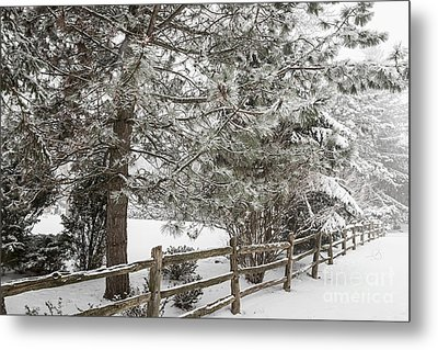 Rural Winter Scene With Fence Metal Print