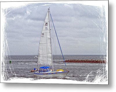 Sailing Metal Print by Constantine Gregory
