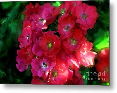 Shades Of Red Metal Print by Mary Lou Chmura
