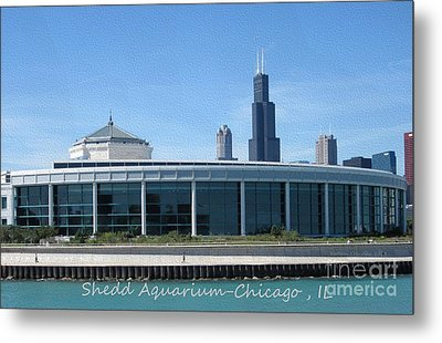 Metal Print featuring the photograph Shedd Aquarium by Kathie Chicoine