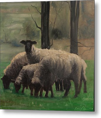 Sheep Family Metal Print by John Reynolds