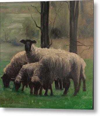 Sheep Family Metal Print
