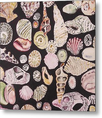 Shells By C . 1.3 Metal Print