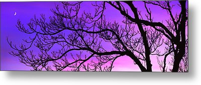 Silhouette Of A Tree At Dusk Metal Print