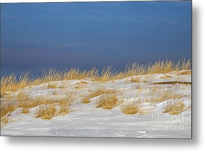 Snow Covered Dunes Metal Print by Twenty Two North Photography