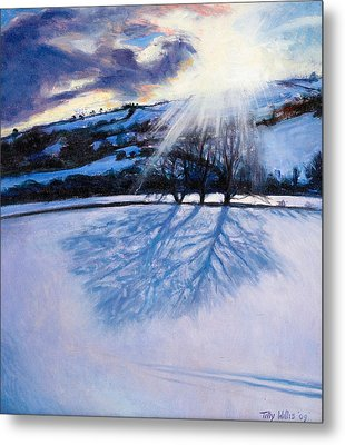 Snow Shadows Metal Print by Tilly Willis
