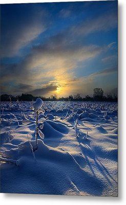 Snow Way Metal Print by Phil Koch
