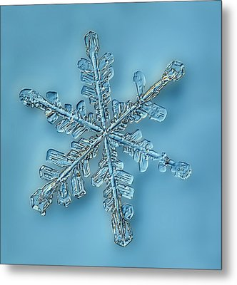 Snowflake Crystal Metal Print by Gerd Guenther