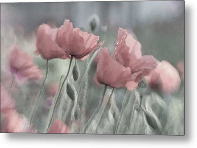 Softly Metal Print by Anne Worner