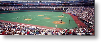 Spectator Watching A Baseball Match Metal Print