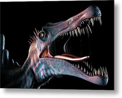 Spinosaurus Head Study Metal Print by Mark Garlick