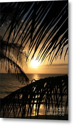 Metal Print featuring the photograph Spirit Of The Dance by Sharon Mau