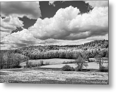 Spring Farm Landscape With Dandelions In Maine Metal Print by Keith Webber Jr