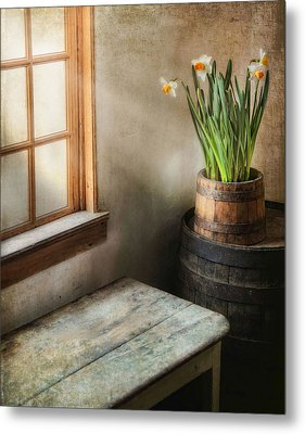 Reaching For The Light Metal Print by Robin-Lee Vieira