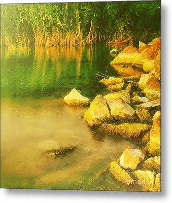 Stones In Front Of The Reed Metal Print by Odon Czintos