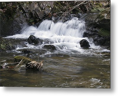 Metal Print featuring the photograph Streambed by David Lester