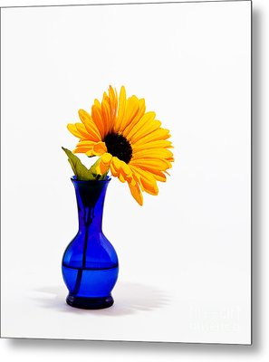 Metal Print featuring the photograph Study In Blue by Cecil Fuselier