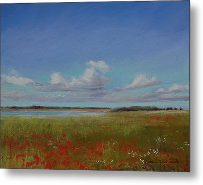 Summer Day Metal Print by Jeanne Rosier Smith
