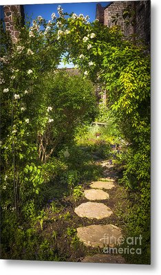 Summer Garden And Path Metal Print by Elena Elisseeva