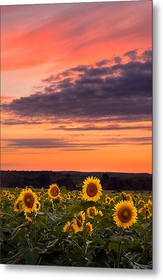 Sun Over Sun Metal Print by Michael Blanchette