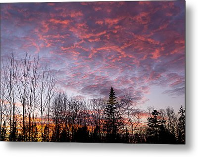 Sunset Jonesport Maine  Metal Print by Trace Kittrell