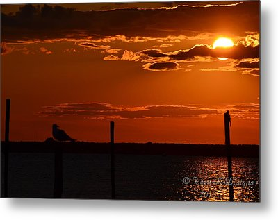 Sunset Metal Print by Terri K Designs