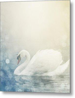Swan Metal Print by Jelena Jovanovic