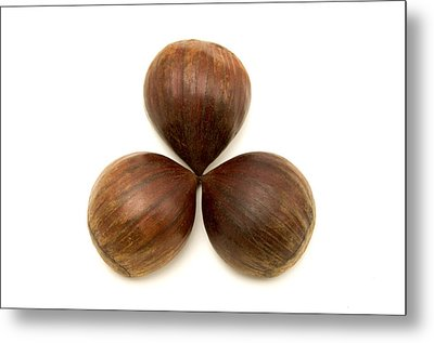 Metal Print featuring the photograph Sweet Chestnuts Fruits by Fabrizio Troiani