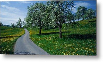 Switzerland, Zug, Road Metal Print by Panoramic Images