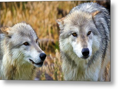 The Eyes Have It Metal Print by Athena Mckinzie