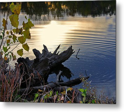 Metal Print featuring the photograph The Ole Fishing Hole by Ellen Tully