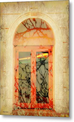 The Other Side Metal Print by Barbie Guitard