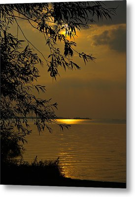 The Shining Light Metal Print by Judy  Johnson