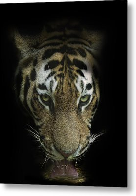 Thirst Metal Print by Cheri McEachin