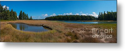 Thompson Island In Maine Panorama Metal Print by Michael Ver Sprill
