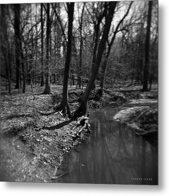 Thorn Creek Metal Print