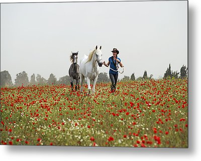 Three At The Poppies' Field... 3 Metal Print by Dubi Roman