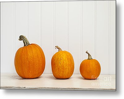Three Pumpkins Metal Print