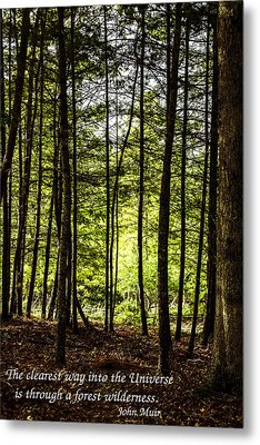 Thru The Trees With John Muir Quote Metal Print