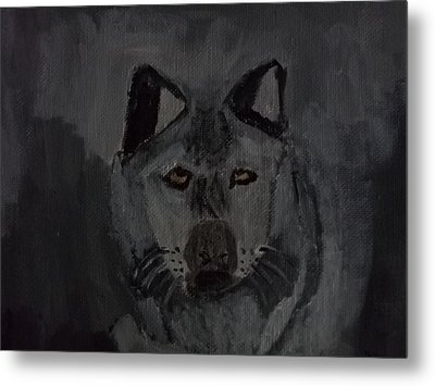 Timber Wolf Acrylic Painting Metal Print by William Sahir House