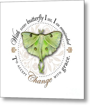 To Accept Change With Grace Metal Print by Amy Kirkpatrick