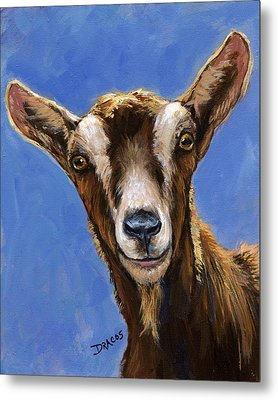 Toggenburg Goat On Blue Metal Print by Dottie Dracos