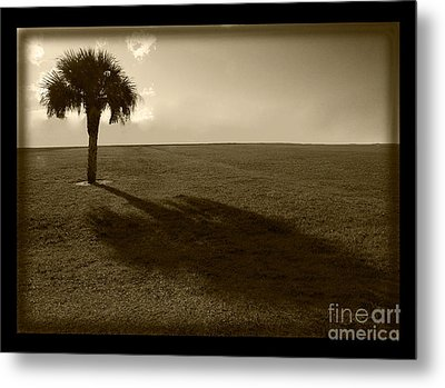 Tree Metal Print by Bruce Bain