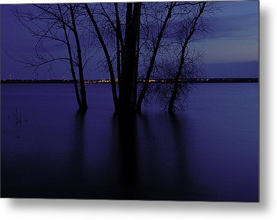 Tree Silhouette Metal Print by Andre Faubert