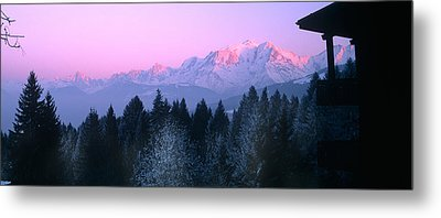 Trees With Snow Covered Mountains Metal Print by Panoramic Images