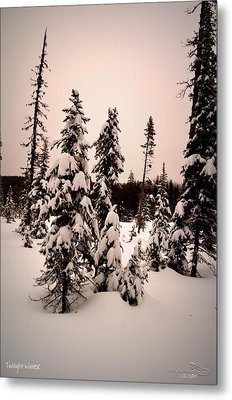 Twilightwinter Metal Print
